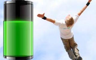 Природные усилители энергии организма