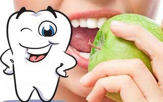 Зубы можно вырастить