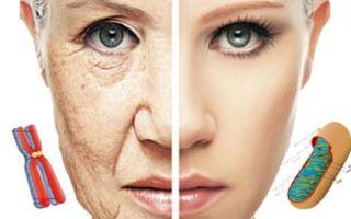 Замедление процесса старения натуральными добавками