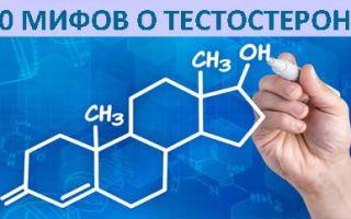10 распространенных мифов о тестостероне
