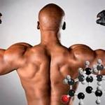 Как поднять уровень тестостерона естественно