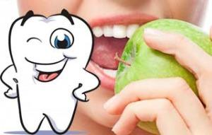можно ли вырастить зубы