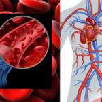 Симптомы плохой циркуляции крови