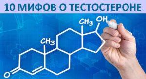 10 мифов о тестостероне